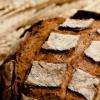 写真:3月18日(日曜日)のさぬきマルシェは、「パンと麦のマルシェ」です!!