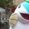 写真:6月3日(日曜日)のさぬきマルシェは、「お魚マルシェ」です!!