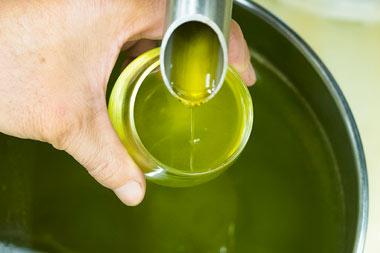 กินน้ำมันมะกอก