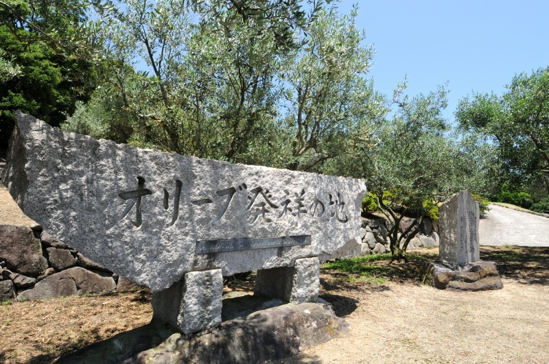 石碑和橄榄树是橄榄的发源地