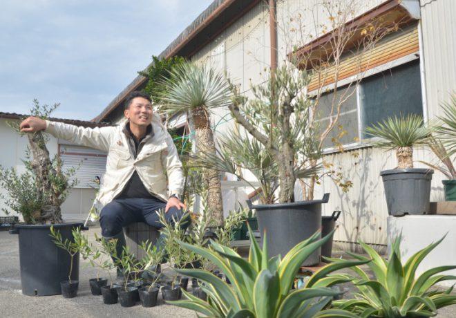 植物和男人的照片