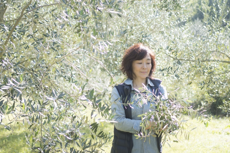 Olive tree and people