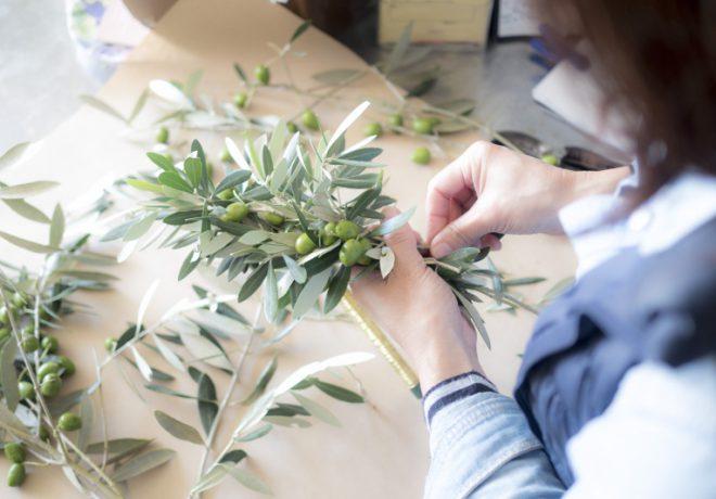 Picking up an olive leaf