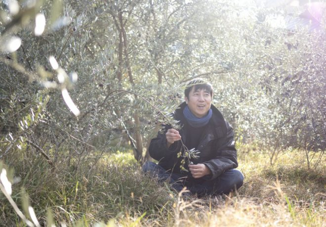 Photo of olive tree and smiling man