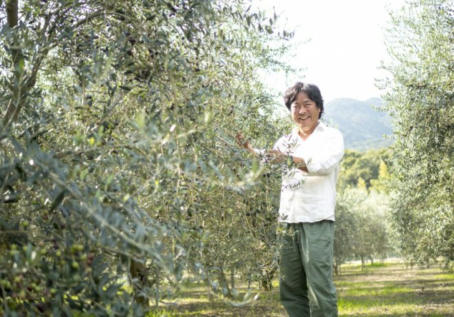 Olive tree and smiling man