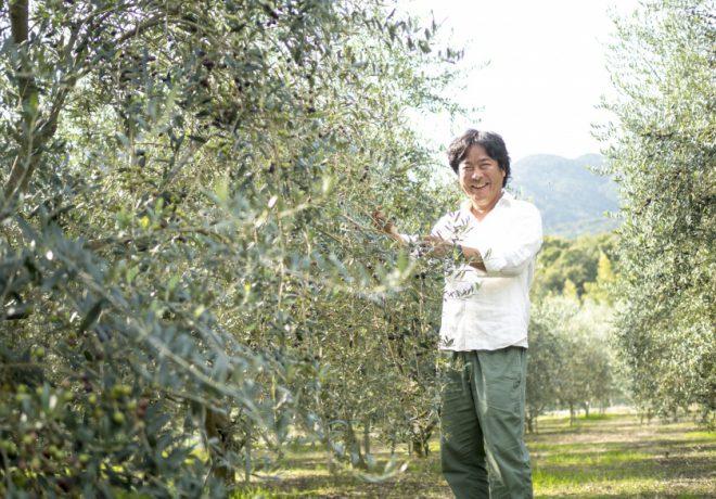橄欖樹和男人微笑著
