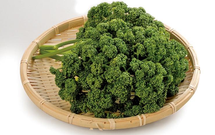 ภาพผักชีฝรั่ง