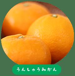 Unshu Mandarin Oranges