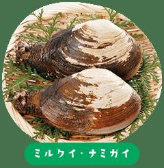 미루쿠이 · 나미가이