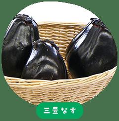 Mitoyo Eggplant