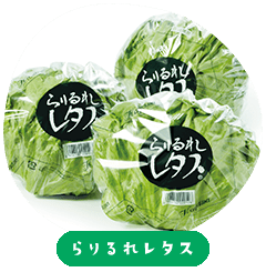 Rarirure lettuce