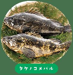 Takenoko Mebaru