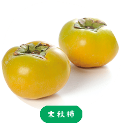Taishu persimmon