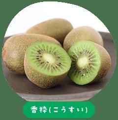 Koiki (น้ำหอม)