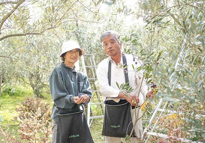 올리브 나무와 미소의 남성과 여성의 사진