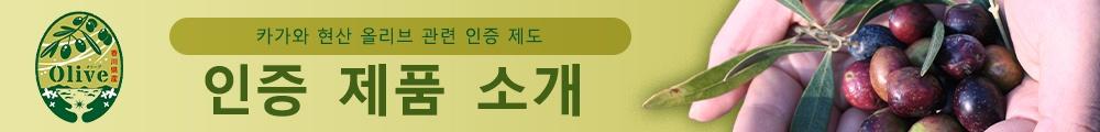 카가와 현산 올리브 관련 인증 제품