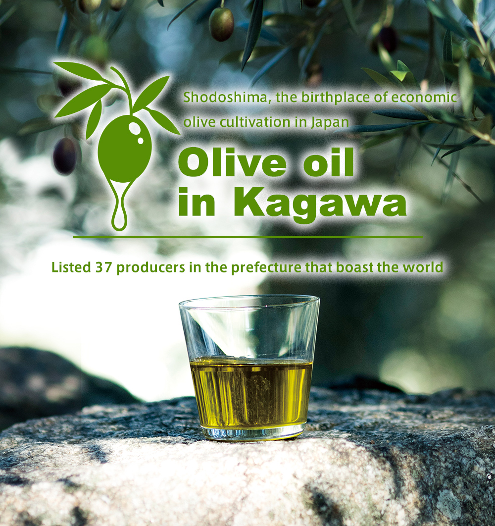 """Shodoshima"", the birthplace of Japanese olive economic cultivation Listed by 34 world-class producers of olive oil in Kagawa Prefecture"